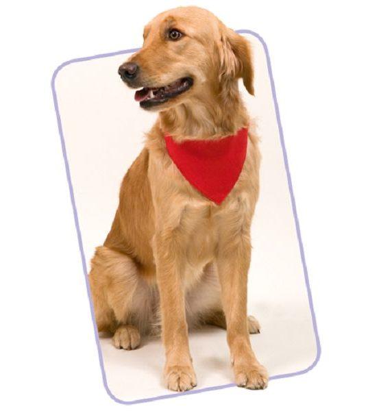 Bandana per cani